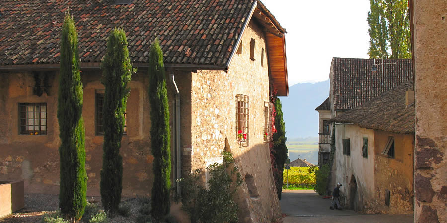 Take a walk in the surrounding wineland with its old agricoltural houses