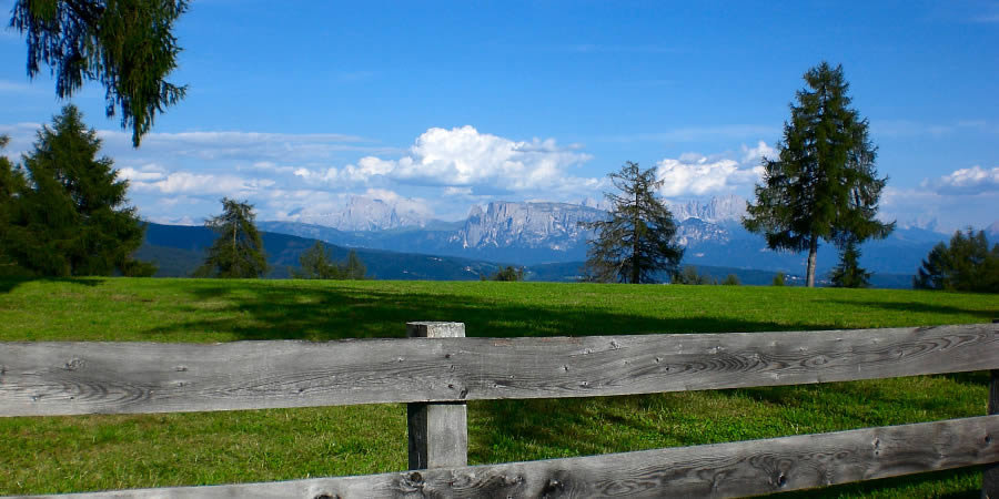 Green alpine meadows on the mountain called